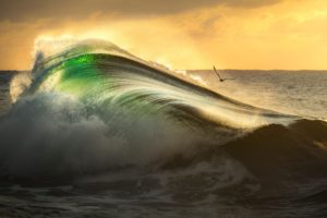 Nikon Surf Photography Awards 2021